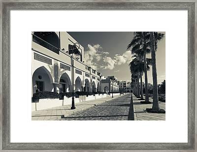 Palm Trees Outside Buildings, Tala Framed Print