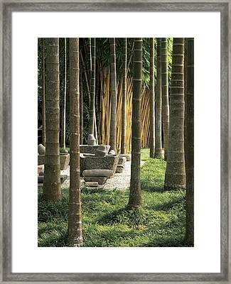 Palm Trees With Mortar And Pestles In Garden Framed Print by Robert McLeod