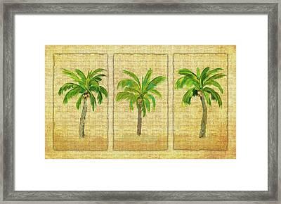 Palm Trio Framed Print