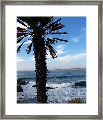 Palm Waves Framed Print by Susan Garren