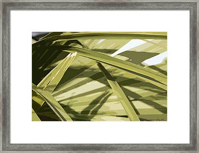 Framed Print featuring the photograph Palmetto I by Kathy Ponce