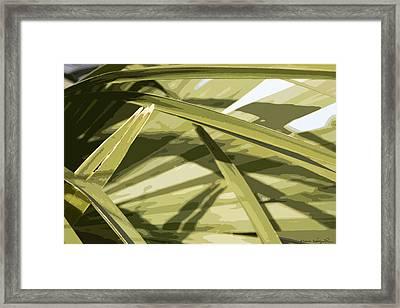 Palmetto I Framed Print by Kathy Ponce