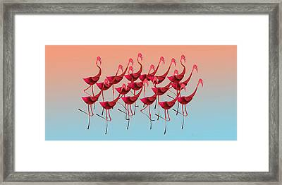 Palmingos Framed Print by Stephanie Grant