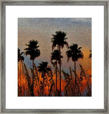 Palms And Sea Oats Antique Style A Framed Print by David Lee Thompson