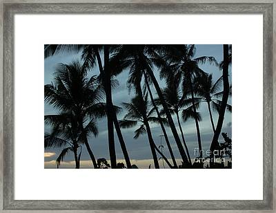 Framed Print featuring the photograph Palms At Dusk by Suzanne Luft