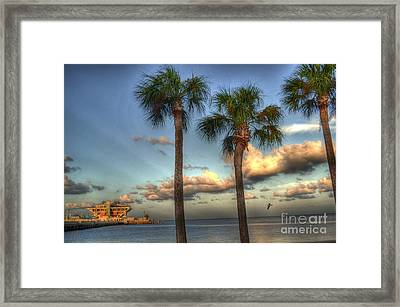 Palms At The Pier Framed Print