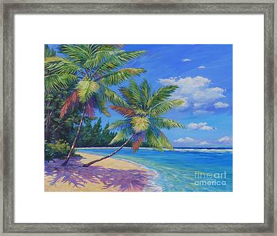 Palms At Winter Haven Framed Print by John Clark