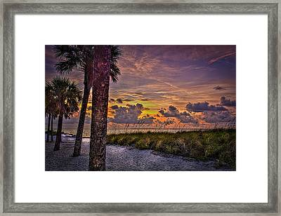 Palms Down To The Beach Framed Print