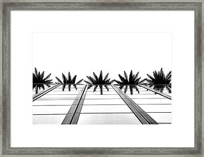 Palms Framed Print by Tammy Espino