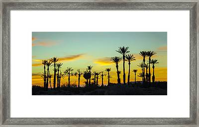 Palm Trees At Dawn Framed Print