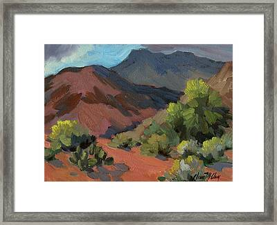 Palo Verdes In Bloom Framed Print by Diane McClary