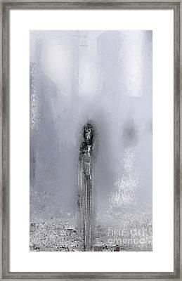 Paloma Framed Print by Rc Rcd