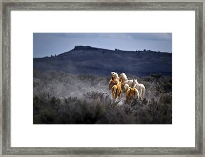 Palomino Buttes Band D1482 Framed Print by Wes and Dotty Weber