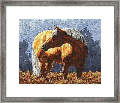 Palomino Horse - Variation Framed Print by Crista Forest