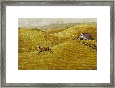Palouse Farm Whitetail Deer Framed Print by Crista Forest