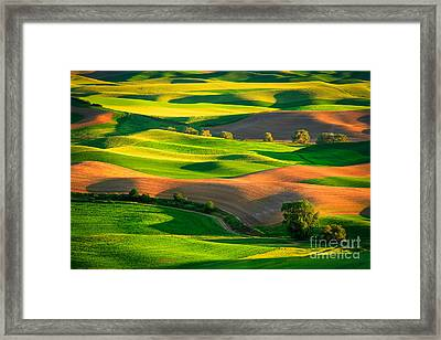 Palouse Fields - June Framed Print by Inge Johnsson