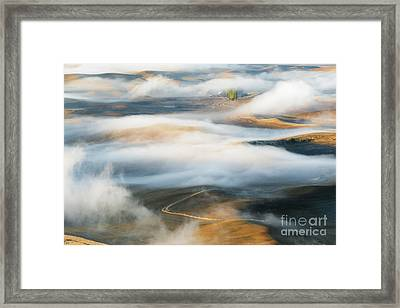 Palouse Gold Framed Print by Mike Dawson