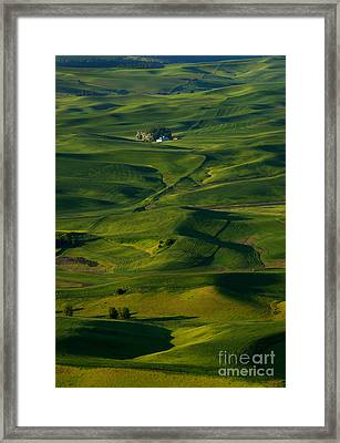 Palouse Green Framed Print by Mike  Dawson