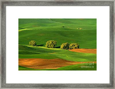 Palouse Green Framed Print by Beve Brown-Clark Photography