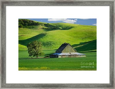 Palouse Grey Barn Framed Print