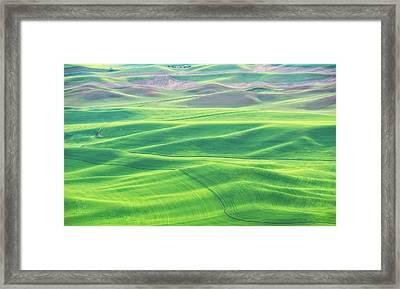 Palouse In Spring Framed Print