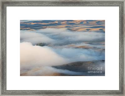 Palouse Morning Mist Framed Print by Mike  Dawson