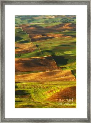 Palouse Morning Framed Print