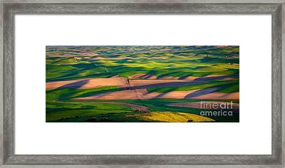 Palouse Ocean Of Wheat Framed Print by Inge Johnsson