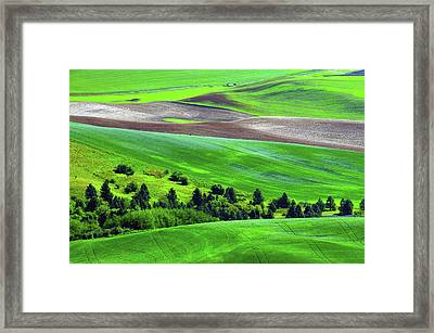 Palouse, Steptoe Butte, Cultivation Framed Print
