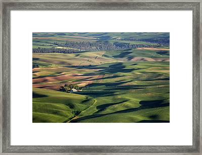 Palouse - Washington - Farms - #2 Framed Print