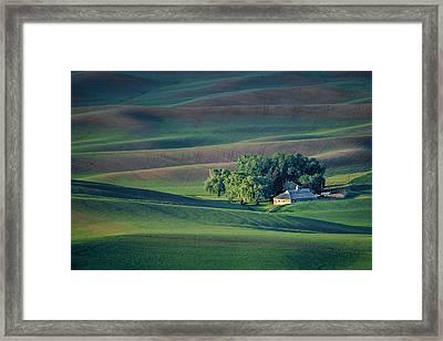 Palouse - Washington - Farms - #3 Framed Print