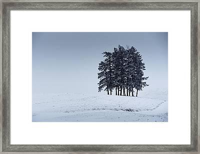 Palouse Whiteout Framed Print by Dan Mihai