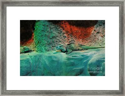 Pals Framed Print by Kathleen Struckle