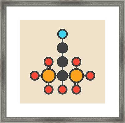 Pamidronic Acid Molecule Framed Print