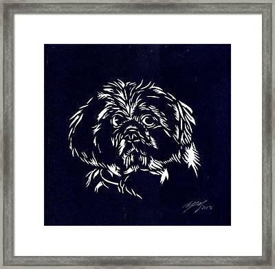 Pampered Dog Framed Print by Alfred Ng