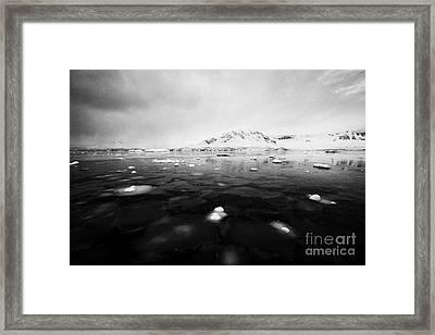 pancake sea ice forming in Fournier Bay on Anvers Island Antarctica Framed Print by Joe Fox