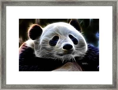Panda - 4934 - F Framed Print by James Ahn