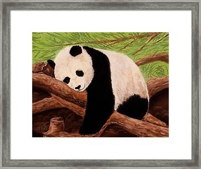 Panda Framed Print by Anastasiya Malakhova