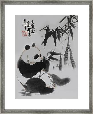 Panda And Bamboo Framed Print