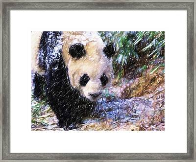 Panda Bear Walking In Forest Framed Print by Lanjee Chee