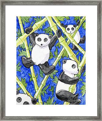 Panda Cubs Framed Print by Whitney Morton