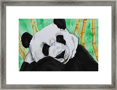 Panda Framed Print by Patricia Olson