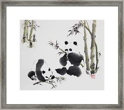 Panda  Framed Print by Ping Yan