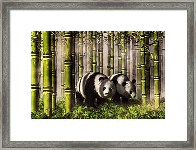 Pandas In A Bamboo Forest Framed Print by Daniel Eskridge
