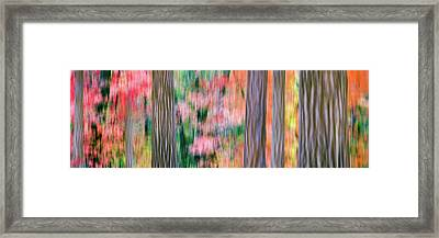 Panning Time Exposure Turns An Autumn Framed Print by Panoramic Images