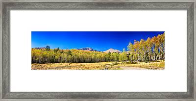 Panorama Autumn Bonanza Framed Print by James BO  Insogna
