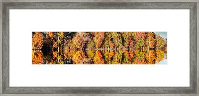 Panorama Of Fall Colors At Martin Dies Junior State Park - Jasper Piney Woods East Texas Framed Print
