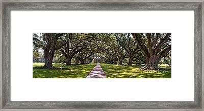 Panorama Of Oak Alley Plantation - Vacherie Louisiana Framed Print