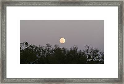 Panoramic New Orleans Moon Rising Framed Print by Joseph Baril