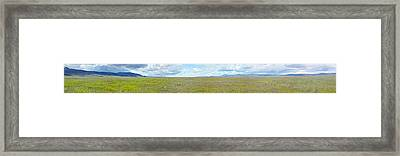 Panoramic View Of Spring Grasslands Framed Print